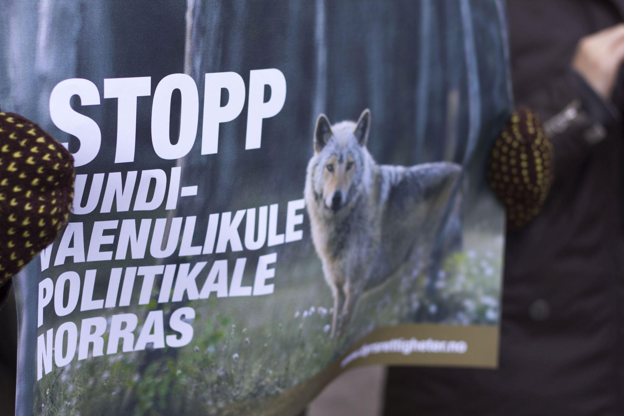Toetusavaldus Norra huntidele