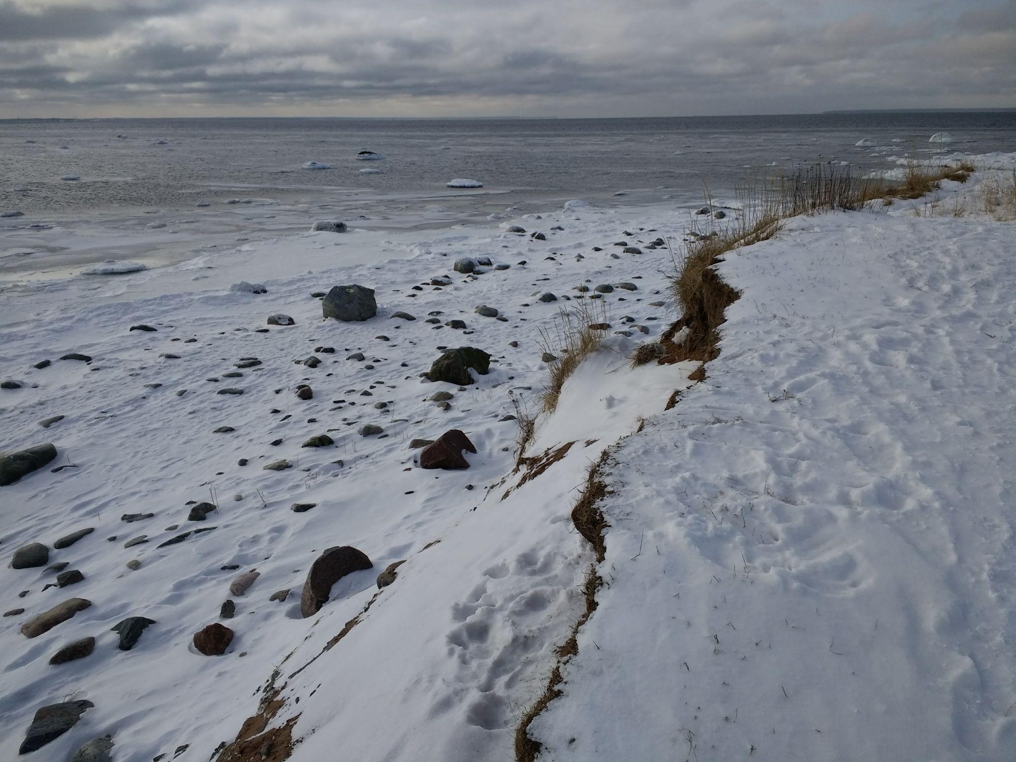 Pandju läänekallas on pankrannikutaoliselt järsk ning selle jalamil leidub ohtrasti kive. Foto: Kadri Aller.