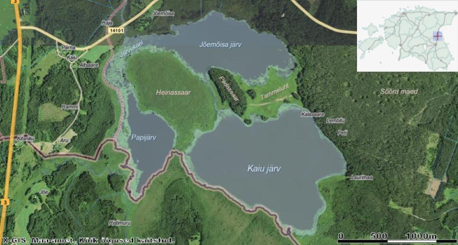 Saarehullu päevaraamat #18 Pedassaar Kaiu järves