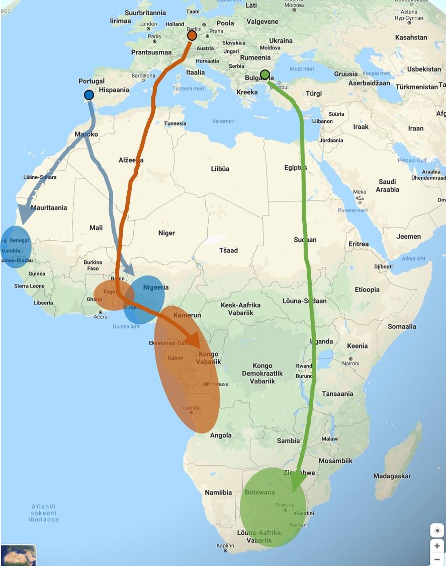 Erinevate mesilasnäppide asurkondade rändeskeem. Musta joonega ümbritsetud ring tähistab pesitsusala, jooned rändeteed, Aafrikas asuvad ovaalsed alad talvitamispiirkondi (Hahn et al. 2019 järgi).