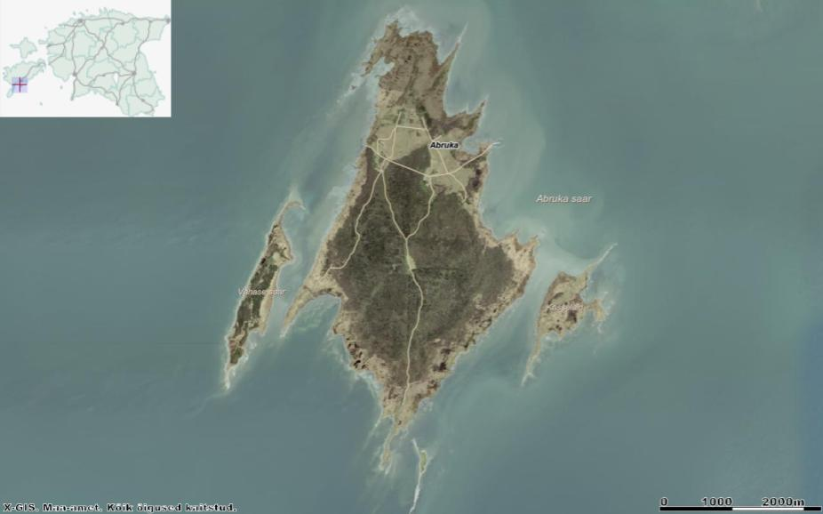 Laiali sirutatud tiibadega kurge meenutav Abruka saar koos Vahase saare (vasakul), Kasselaiu (paremal) ja Linnusitamaaga (all). Allikas: Maa-ameti Geoportaal.