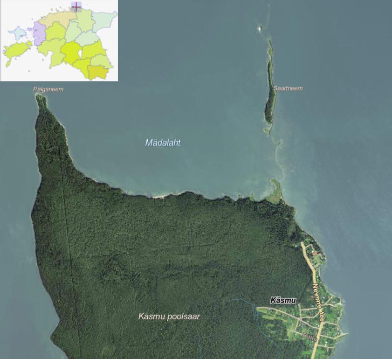 Käsmu poolsaar ja selle tipus asuv Saartneem ehk Kuradisaar. (Maa-ameti kaardiportaal)