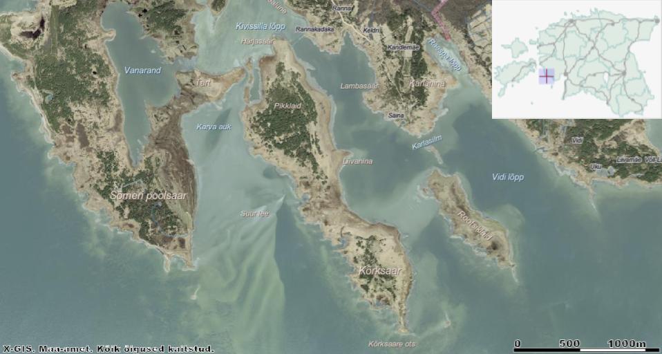 Pikliku Kõrksaare alumises, puudega kaetud osas asub suvilakrunt. Ülemisel metsastunud alal (kaardil nimetus Pikklaid) asuvad lagunenud hooned, mida kasutasid pioneerid. Kahe saaretipu vahele jääb madal ja mehekõrguse rooga ala. Kaardi ülaosas kohanime Rannakadaka juures on näha peene joonena läbi mere kulgevat muuli. Allikas: Maa-ameti Geoportaal