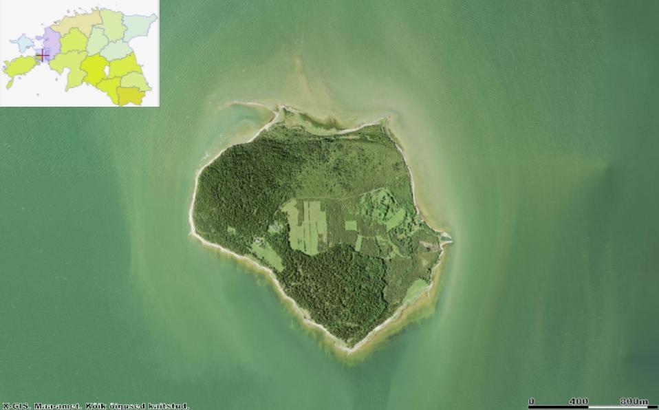 Kesselaiu loodenurgas näeme merre sirutuvat kitsast Suursäärt, mille juures asub Kesse abajas. Kesse pank jääb metsaga palistatud lääne- ning põline külakoht idarannikule. Allikas: Maa-ameti Geoportaal.