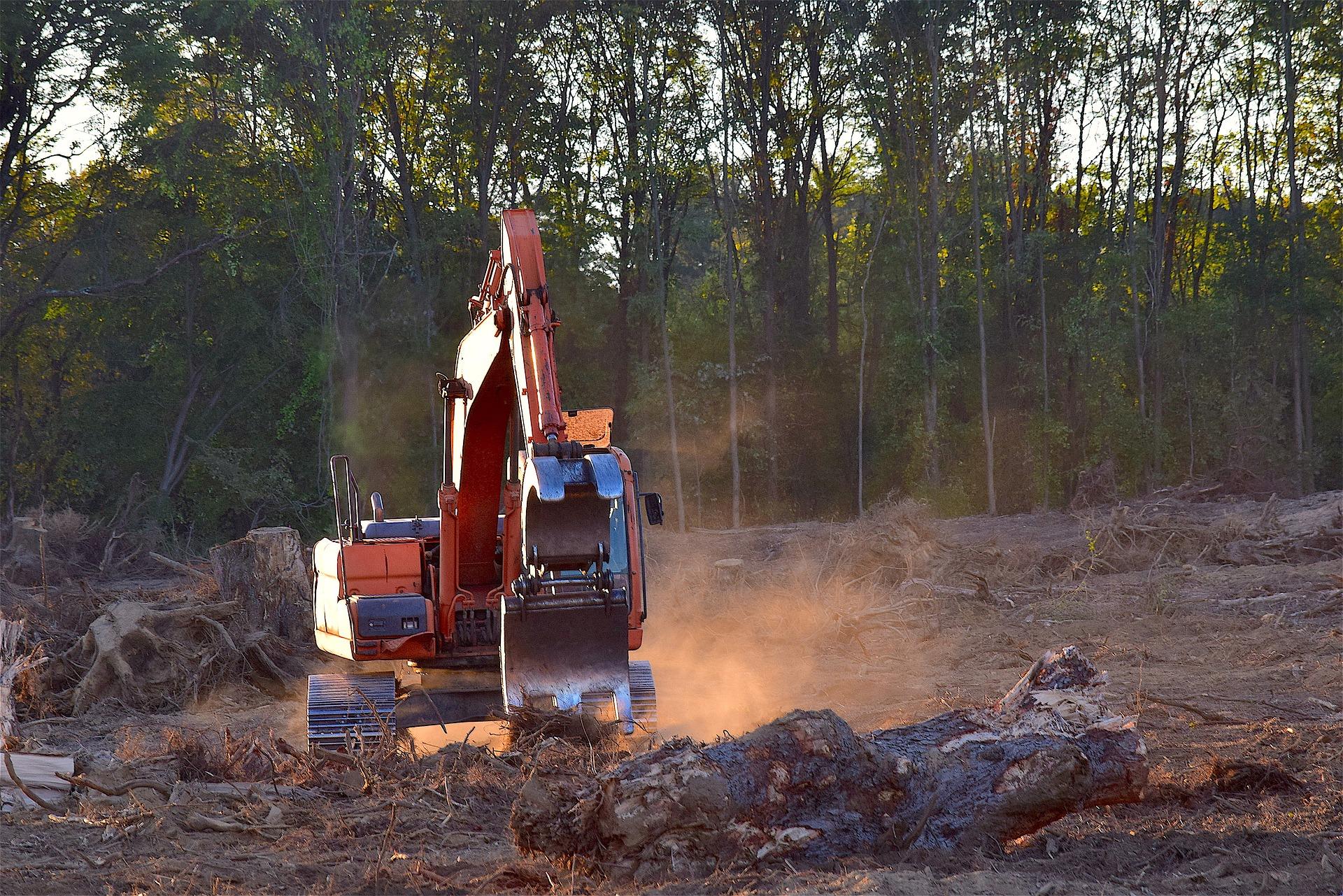 Teadlased: Euroopa Liidu taastuvenergia direktiiv soosib üleilmset metsaraiet