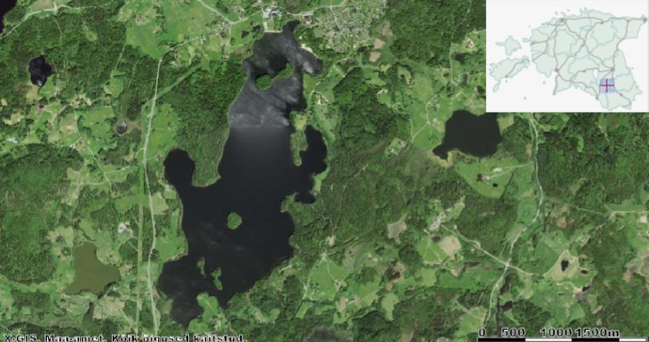 Pühajärve lõunakaldale (pildil all) jäävad Innussaar (vasakul) ja Lepassaar (paremal). Järve keskosas asub Kloostrisaar ning põhjakaldal (pildil ülal) Sõsarsaared. Allikas: Maa-ameti Geoportaal.