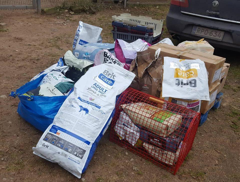 Varjupaikade MTÜ vajab Sinu annetusi, et aidata kodutuid loomi