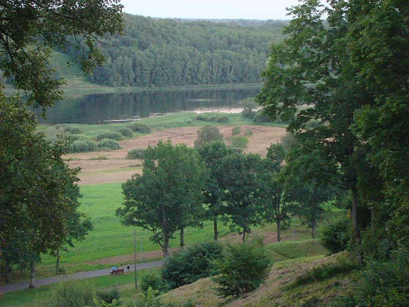 Viljandi lossimäed on nüüd lammaste elupaigaks